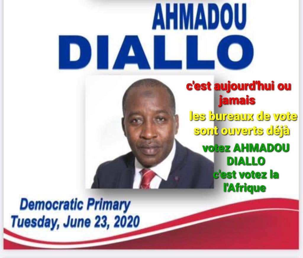 Ahmadou Diallo Versus New York State Board of Elections: Something Is Fishy